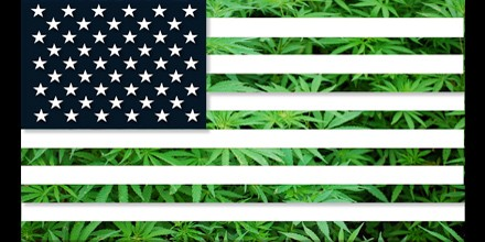 The Presidential Election & Marijuana Legalization