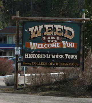 Weed Like To Welcome You