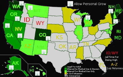 Medical Marijuana 2013 by the State on the USA Map